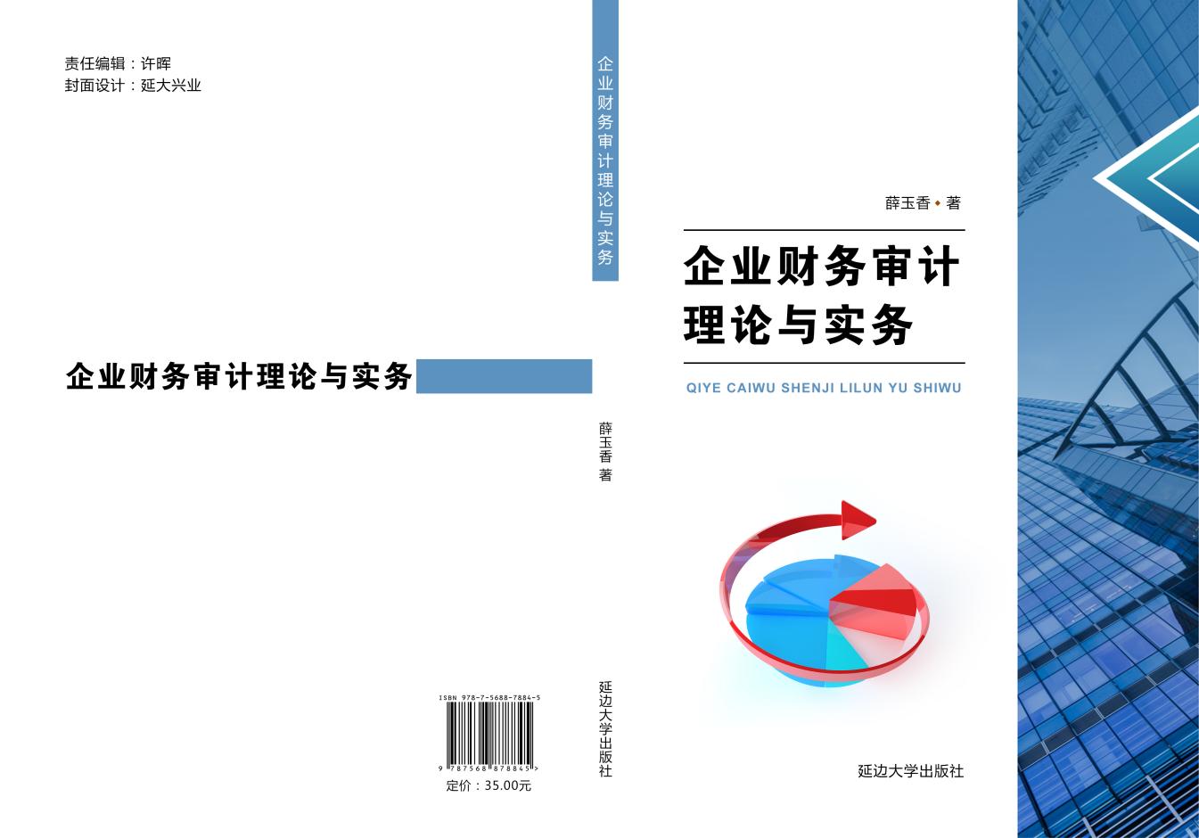 企业财务审计理论与实务